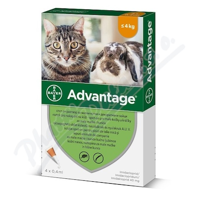 Advantage 40mg malé kočky+králíci spot-on 4x0.4ml